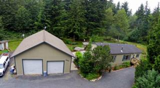 324  Cottonwood Dr  , Camano Island, WA 98282 (#663726) :: Home4investment Real Estate Team