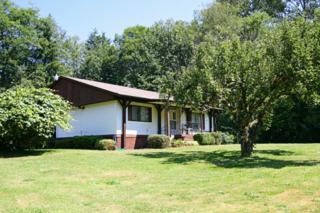 22951  Mosier Rd  , Sedro Woolley, WA 98284 (#667795) :: Home4investment Real Estate Team