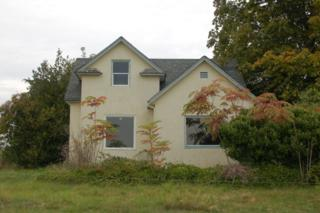 2764  Mountain View Rd  , Ferndale, WA 98248 (#696569) :: Home4investment Real Estate Team