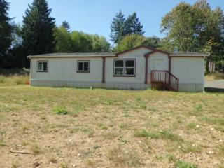 502  Shannon Lewis Lane  , Winlock, WA 98596 (#700909) :: Home4investment Real Estate Team
