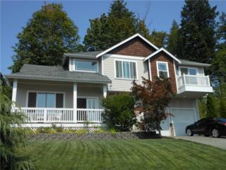 422  Longtime Lane  , Sedro Woolley, WA 98284 (#701307) :: Home4investment Real Estate Team