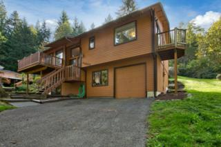 44647 SE 151st Place  , North Bend, WA 98045 (#702934) :: The DiBello Real Estate Group