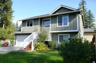 41322  May Creek Dr  , Gold Bar, WA 98251 (#703230) :: Home4investment Real Estate Team