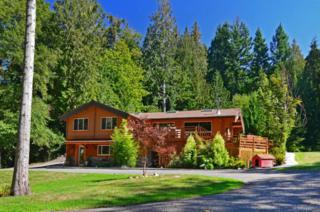 9300  Holly Farm Lane NE , Bainbridge Island, WA 98110 (#706986) :: Exclusive Home Realty