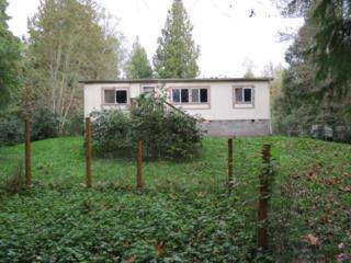 41528  Center St  , Concrete, WA 98237 (#708151) :: Home4investment Real Estate Team