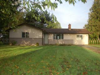 219  Pollman Cir  , Lynden, WA 98264 (#709088) :: Home4investment Real Estate Team