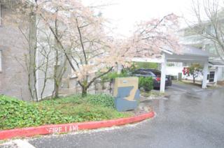 4519  125th Ave SE 203, Bellevue, WA 98006 (#713704) :: Keller Williams Realty Greater Seattle