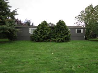 13547  King Lane  , Mount Vernon, WA 98273 (#714205) :: Home4investment Real Estate Team