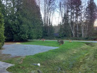 31-LOT  Cedar Lane  , Sedro Woolley, WA 98284 (#716897) :: Home4investment Real Estate Team