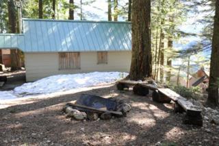 130  Forest Service Road 4832  , Snoqualmie Pass, WA 98068 (#717526) :: FreeWashingtonSearch.com