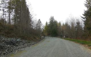 0-Lot 3  Buzzie Lane  , Sedro Woolley, WA 98284 (#718478) :: Home4investment Real Estate Team