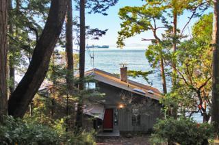 515  Smugglers Cove Rd  , San Juan Island, WA 98250 (#718911) :: Nick McLean Real Estate Group