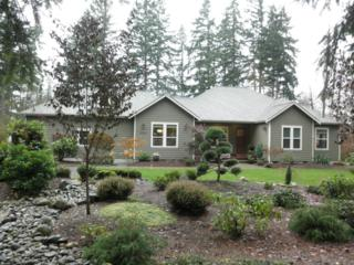 16926  126th Ave E , Puyallup, WA 98374 (#719077) :: Home4investment Real Estate Team