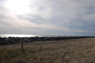 1499  Ocean Shores Blvd  , Ocean Shores, WA 98569 (#719833) :: Home4investment Real Estate Team