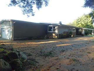 311  O'neil Rd  , Morton, WA 98356 (#720188) :: Home4investment Real Estate Team