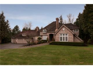 16264 SE 63rd St  , Bellevue, WA 98006 (#720216) :: Exclusive Home Realty