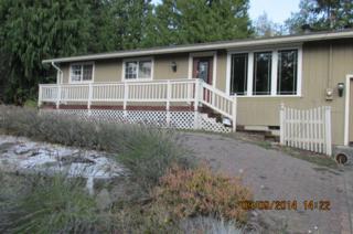 4836 N Island Dr E , Bonney Lake, WA 98391 (#720398) :: Keller Williams Realty