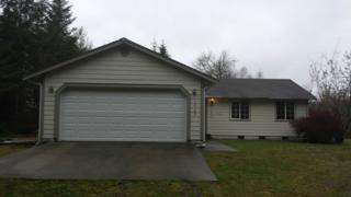 1043 E Satsop Rd  , Elma, WA 98541 (#720432) :: Home4investment Real Estate Team