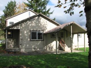 8675  B. D. Minkler Rd  , Sedro Woolley, WA 98284 (#720769) :: Home4investment Real Estate Team