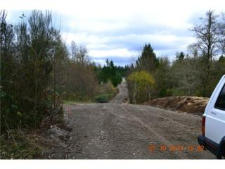 3420  137th Trail SW , Tenino, WA 98589 (#722305) :: Burger Professionals