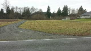 10306  Collins Rd  , Sedro Woolley, WA 98284 (#723271) :: Home4investment Real Estate Team
