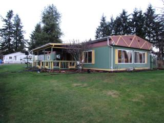 517 S 98th St  , Tacoma, WA 98444 (#723869) :: Home4investment Real Estate Team