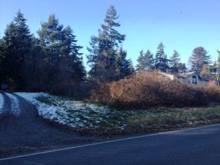 0  Parcel 948302806  , Port Townsend, WA 98368 (#723989) :: Keller Williams Realty Greater Seattle