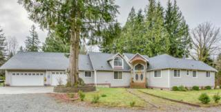 11369  Foxfire Lane  , Sedro Woolley, WA 98284 (#724109) :: Home4investment Real Estate Team