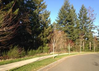 0  Bell Hill Place  1 & 2, Dupont, WA 98327 (#725333) :: Home4investment Real Estate Team