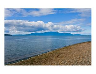 0  W Shore Dr  , Ferndale, WA 98262 (#725586) :: Home4investment Real Estate Team