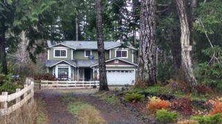 982 E Mikkelsen Rd  , Shelton, WA 98584 (#725638) :: Home4investment Real Estate Team