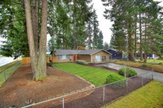 126  156th St E , Tacoma, WA 98445 (#725673) :: Commencement Bay Brokers