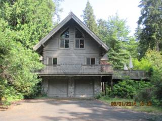 21202  253rd Place SE , Maple Valley, WA 98038 (#726372) :: Exclusive Home Realty