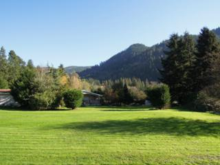 11125  Issaquah/Hobart Rd SE , Issaquah, WA 98027 (#726729) :: Exclusive Home Realty