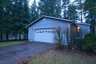 8631  Golden Valley Dr  , Maple Falls, WA 98266 (#728431) :: Home4investment Real Estate Team