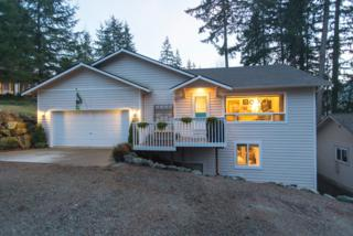 3043  Ridgeview Dr  , Sedro Woolley, WA 98284 (#731904) :: Home4investment Real Estate Team