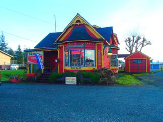 215 E Moore St  , Sedro Woolley, WA 98284 (#733935) :: Home4investment Real Estate Team