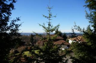 1-XXX  120th Ave SE , Newcastle, WA 98056 (#734347) :: Exclusive Home Realty