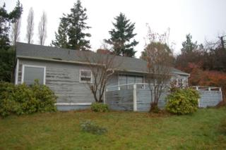 530  Marble St  , San Juan Island, WA 98250 (#734517) :: Home4investment Real Estate Team