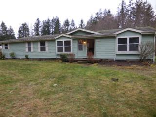 6585 SE 160th St  , Olalla, WA 98359 (#735510) :: Home4investment Real Estate Team