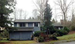 17217 NE 14th St  , Bellevue, WA 98008 (#736809) :: Exclusive Home Realty
