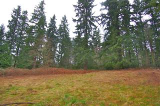 16830 NE 143rd St  , Woodinville, WA 98072 (#738449) :: Exclusive Home Realty