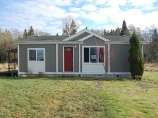 4036  Grandview Rd  , Ferndale, WA 98248 (#739490) :: Home4investment Real Estate Team
