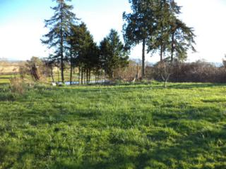 0-Lot 17  Shaw Ct  , Ferndale, WA 98248 (#744647) :: Home4investment Real Estate Team