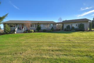 821  H Street Rd  , Lynden, WA 98264 (#744874) :: Home4investment Real Estate Team