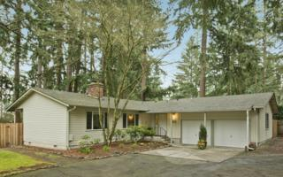 15934 SE 41st Place  , Bellevue, WA 98006 (#747701) :: Exclusive Home Realty