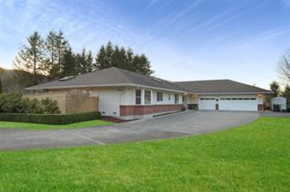 32850 SE 47th Place  , Fall City, WA 98024 (#749855) :: Exclusive Home Realty