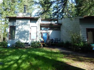 3388  Haynie Rd  , Blaine, WA 98230 (#751542) :: Home4investment Real Estate Team