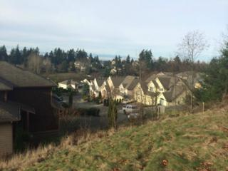 13830 SE 77th Place  , Newcastle, WA 98059 (#755690) :: Exclusive Home Realty