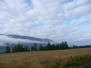 0-Lot 4  Windsong Lane  , Sedro Woolley, WA 98284 (#756674) :: Home4investment Real Estate Team